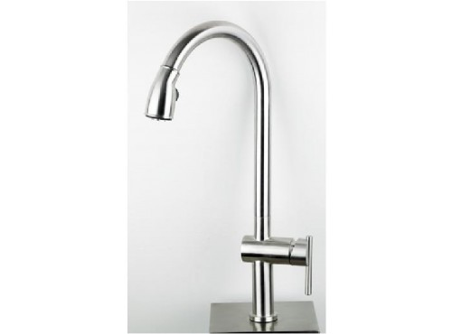 Kitchen Faucet with spray. Stainless steel Finish